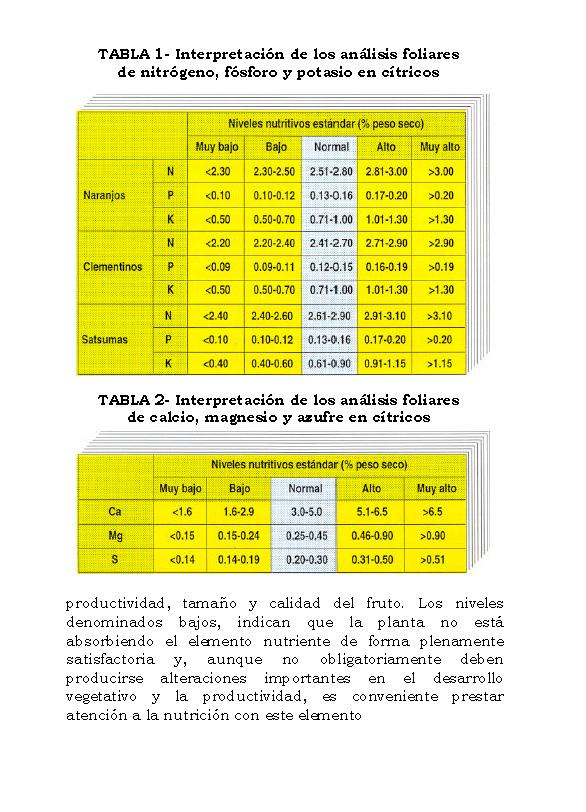 AnalisisMin_Página_06