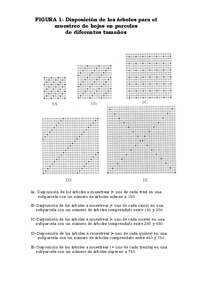 AnalisisMin_Página_10