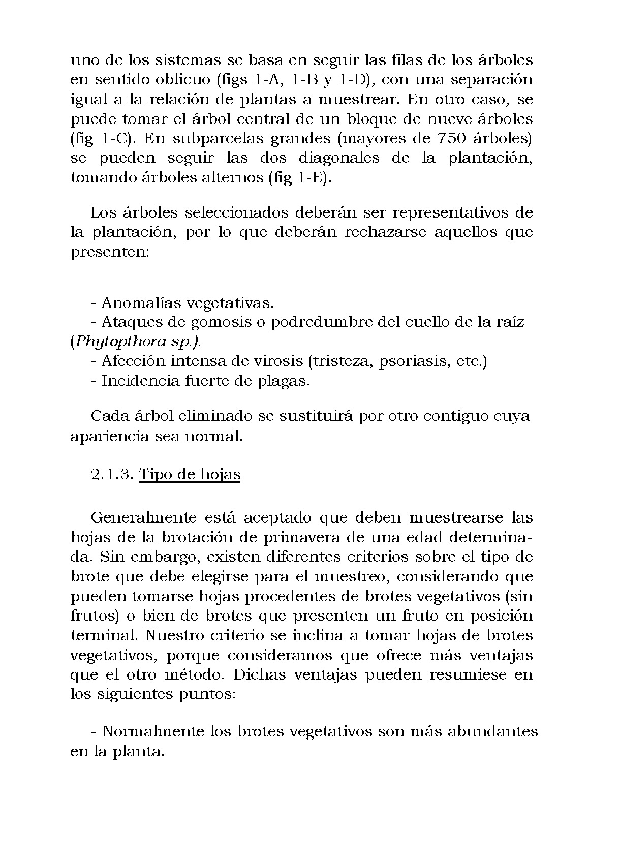 AnalisisMin_Página_11