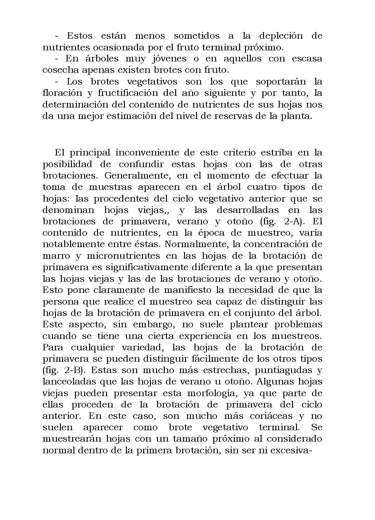 AnalisisMin_Página_12
