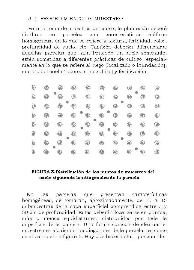AnalisisMin_Página_20