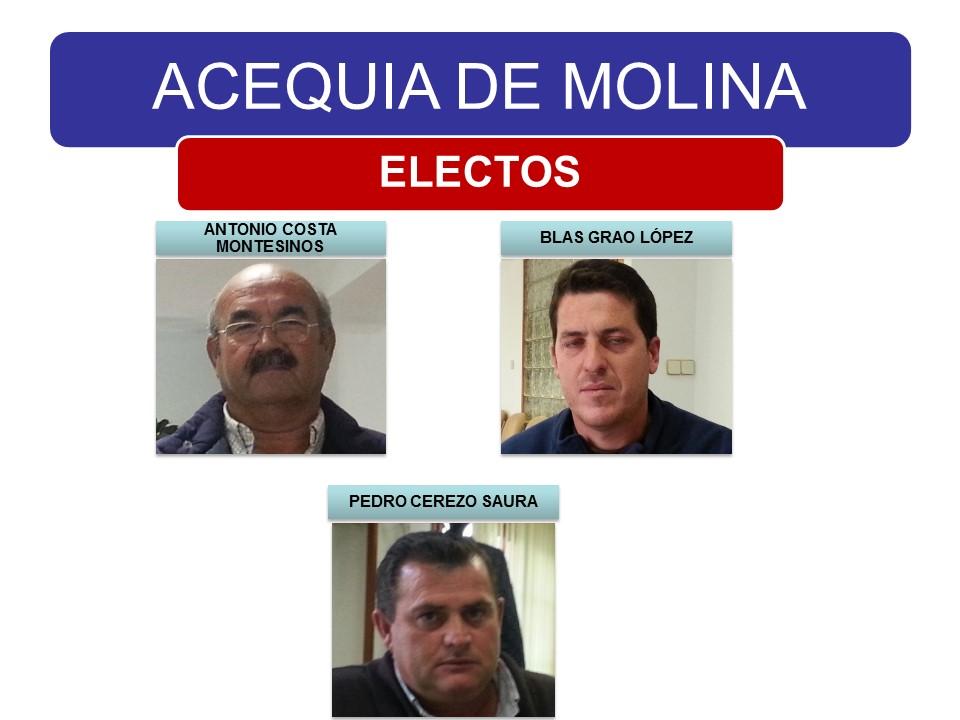 Candidatos a Electos