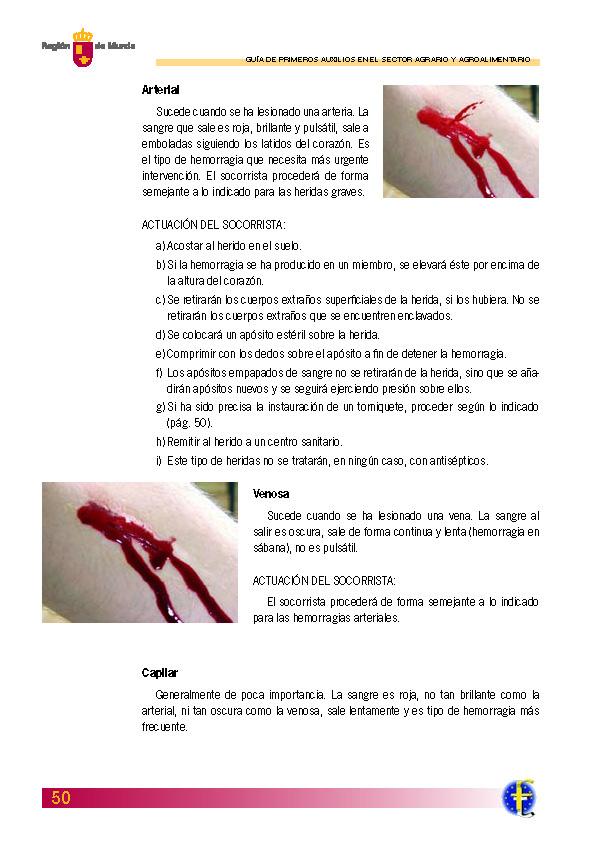 Primeros auxilios_Página_050