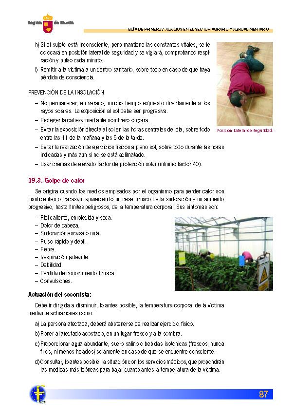 Primeros auxilios_Página_087